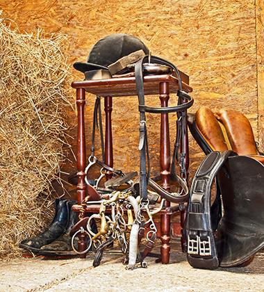 Installations équitation Coutances, Nicorps