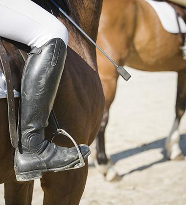Concours d'équitation Coutances, Nicorps